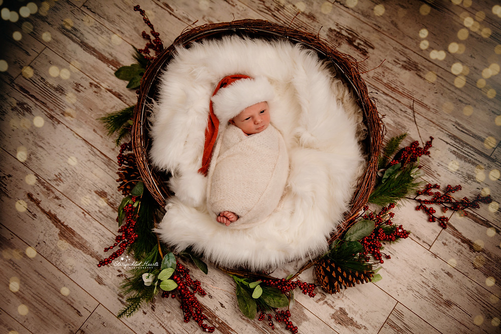 christmas themed newborn photoshoot by starspeckled hearts photography in hampshire