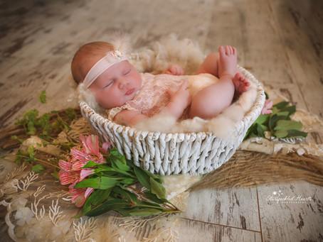 Newborn Photoshoot - Romy | Hampshire | Surrey | Guildford | Fleet | Starspeckled Hearts Photography