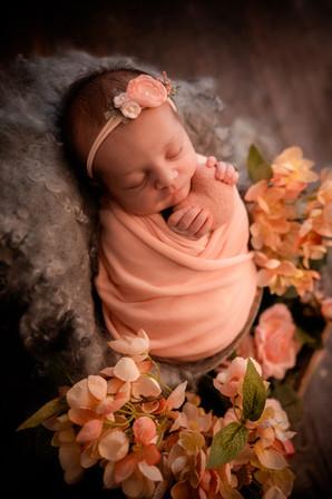 best newborn photographer hampshire aldershot