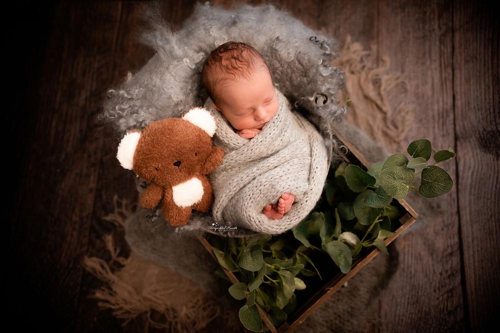 sleeping newborn baby boy wrapped in grey, posed in a bucket