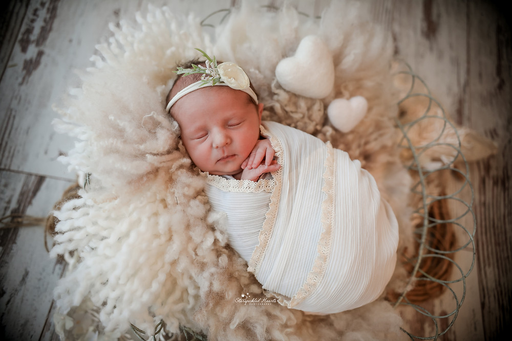 newborn baby wrapped in a white textured fabric lying in a basket stuffed with white wool