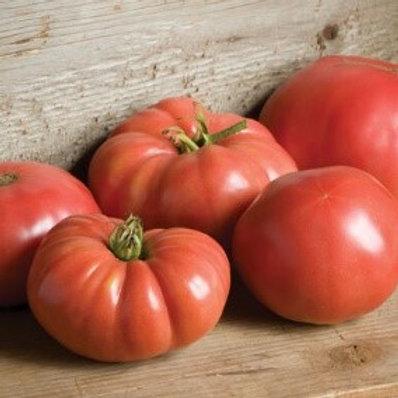 Heirloom Tomato - German Johnson - AVAILABLE STARTING 4/20