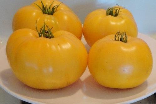 Heirloom Tomato - Dixie Golden Giant - AVAILABLE STARTING 4/20