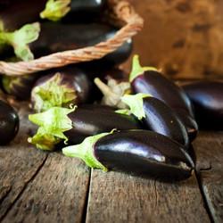 Storing Eggplant