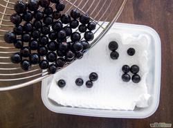 Blueberry Storage