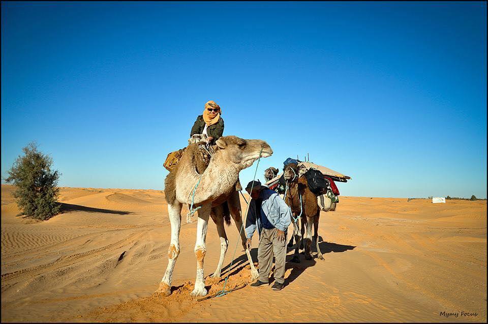 Trek en dromadaires Djerba.jpg