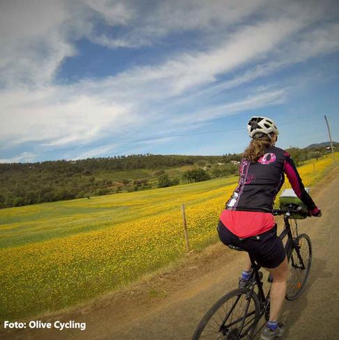 alantejo-tour-bike-2png