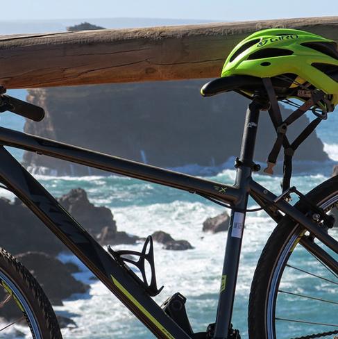 algarve-bike-tour-olive-cycling-8png