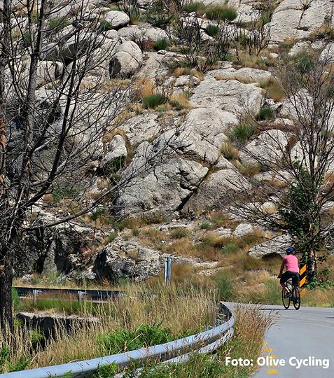 Douro & Estrela Bike Tour