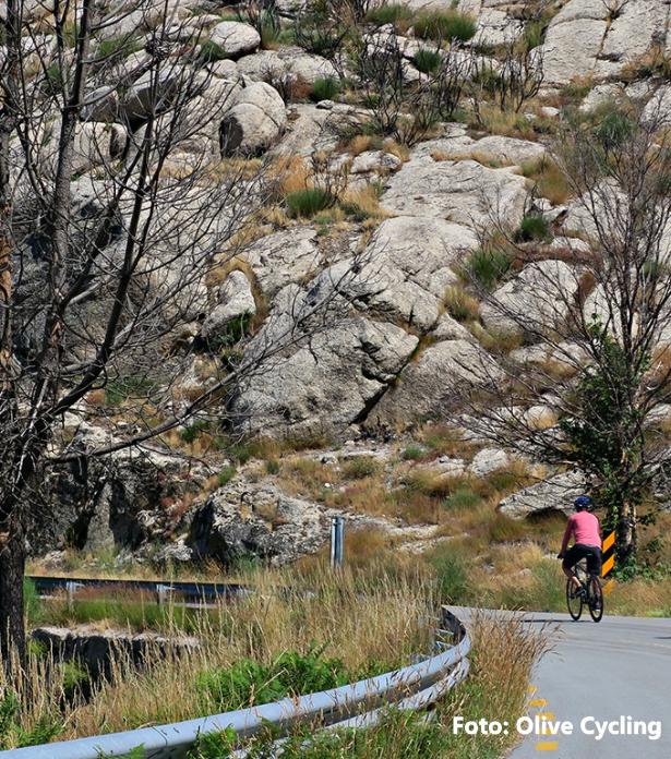 tour-bike-douro-e-estrela-8png