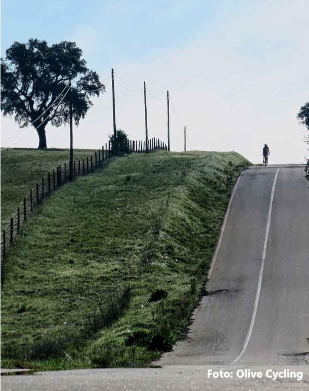 alantejo-tour-bike-9png