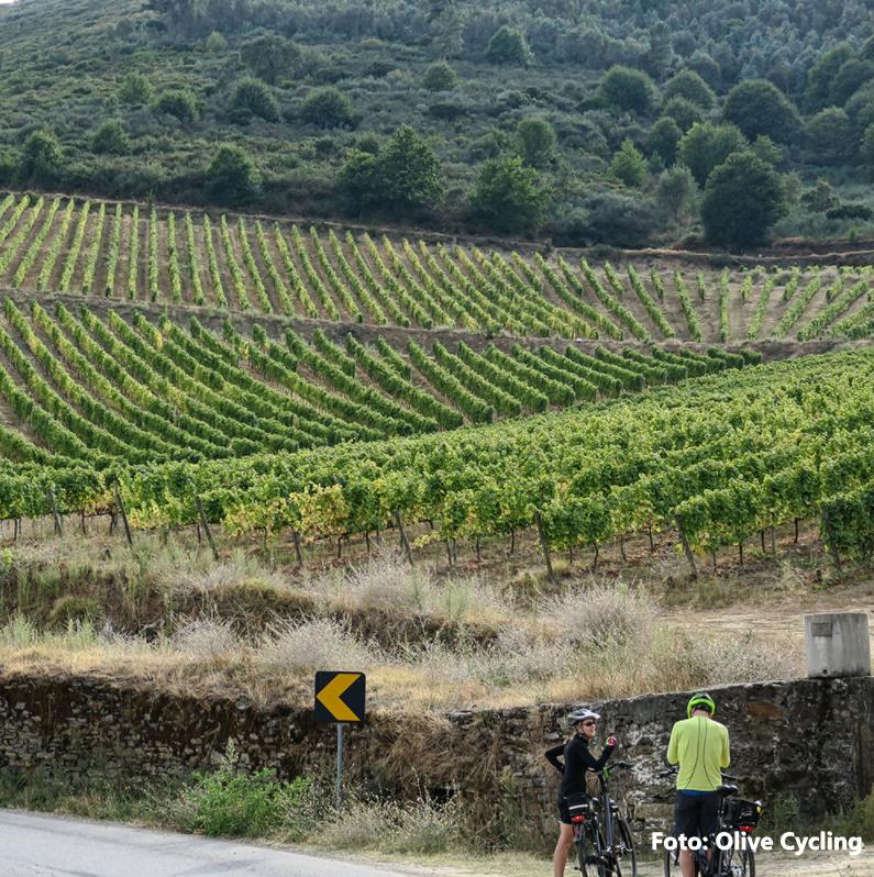 tour-bike-douro-e-estrela-2png