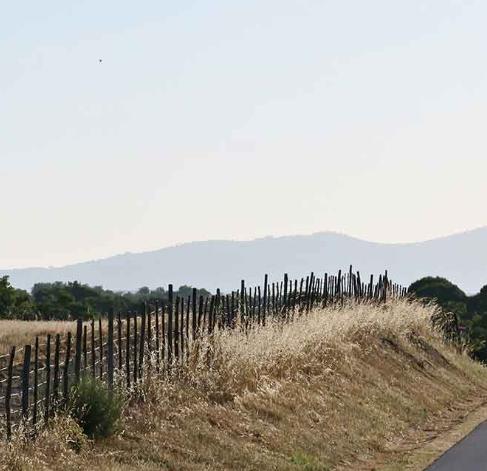 alantejo-tour-bike-8png