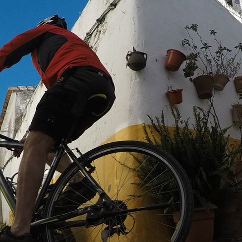 algarve-bike-tour-olive-cycling-10pn