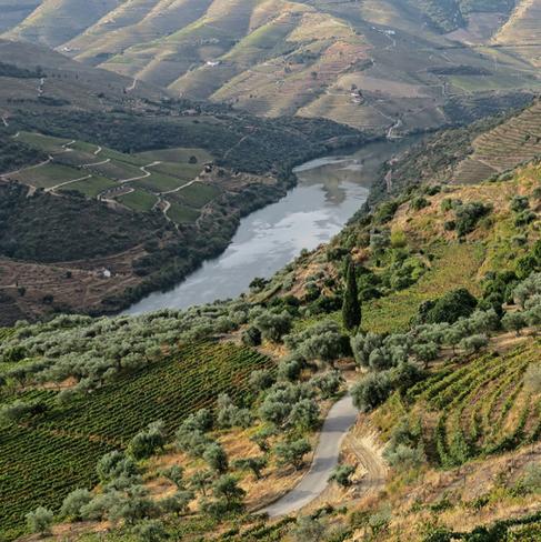 tour-bike-douro-e-estrela-10png