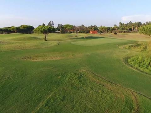 Hoyo 2 Family Golf