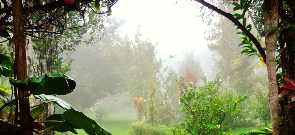 y la niebla que baja al atardecer, harán que tu experiencia aquí sea inolvidable.