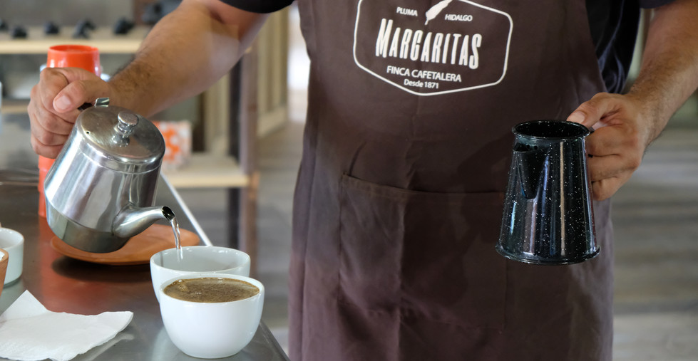 Learn how to diference a good coffee from a bad coffee and what makes our specialty coffee that great.