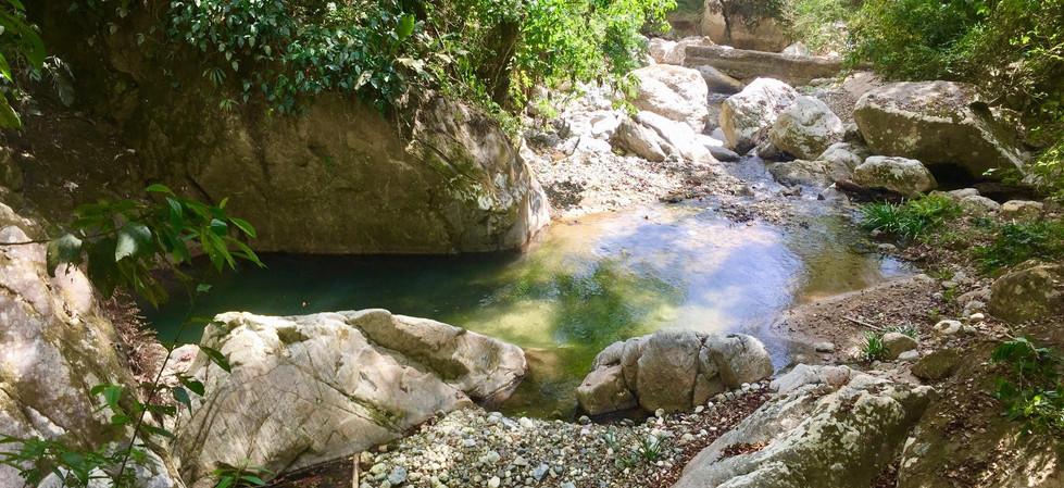 Finca Margaritas tiene 143 hectáreas ( 350 acres) de selva tropical. Este pequeño cañón en medio de la jungla