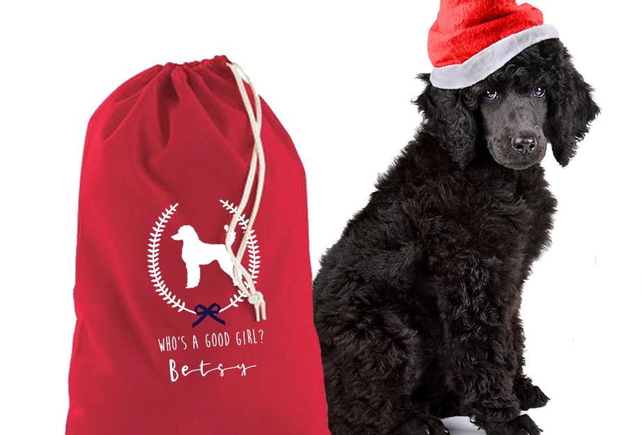 Good Boy/Girl Christmas Sack