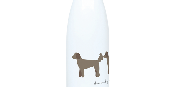 Trio Steel Water Bottle - Dandy Doodles