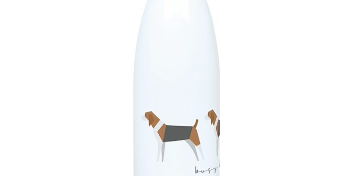 Trio Steel Water Bottle - Busy Beagles