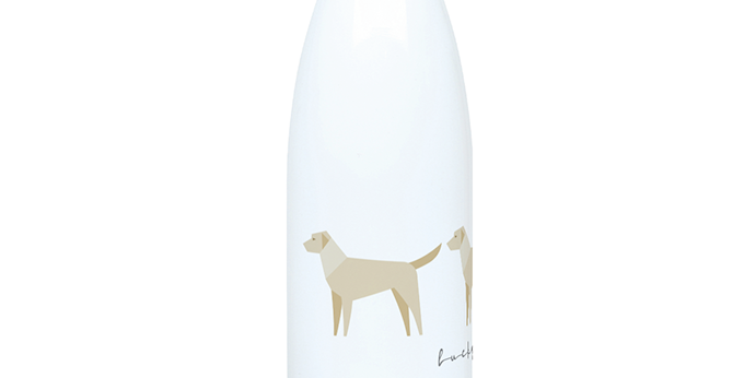 Trio Steel Water Bottle - Lucky Labs
