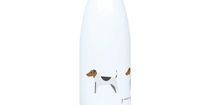 Trio Steel Water Bottle - Jazzy Jacks