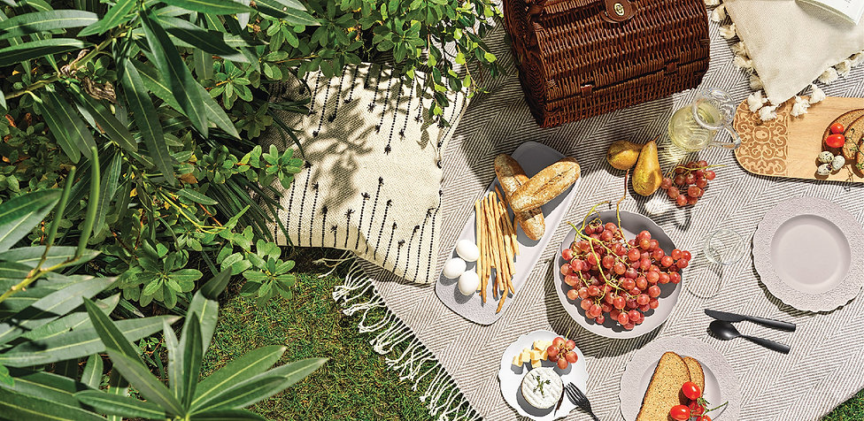 Brand Page Banner - Picnic & Outdoor.jpg