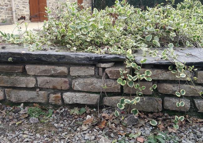 jardinière pierres naturelles