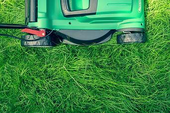 tontes pelouses