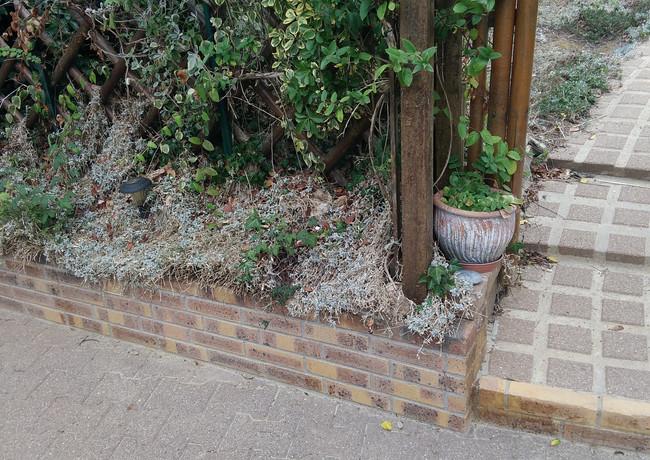 jardinière briquettes