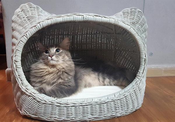 Niko Cat Bed - Ash Grey