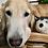 Thumbnail: Kitkat Pet Bed (Large) - Natural