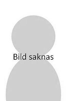 BILDSAKNAS.jpg