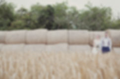 Outdoor wedding corn field with bride and groom