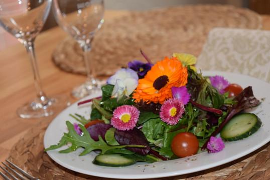 Wildkräuter Salat | Passion Hameln