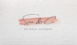 Media Calendar Seca and Co.png
