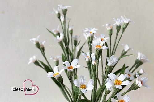 Filler Flowers - Single Stem
