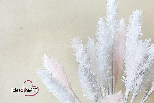 Bunny Tail Grass - Single Stem