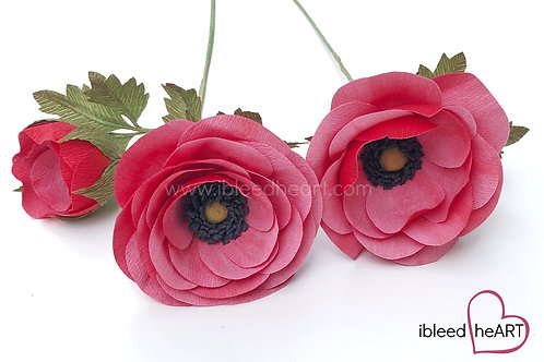 Open Ranunculus - Two Toned Red