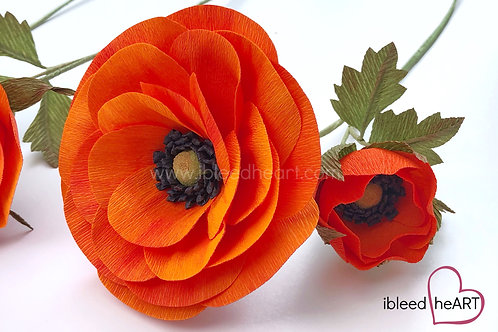 Open Ranunculus - Orange