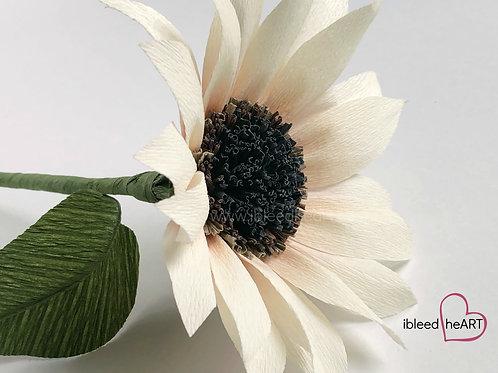 Blush Sunflower Single Stem