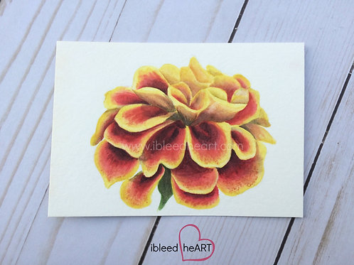 Marigold Floral Painting