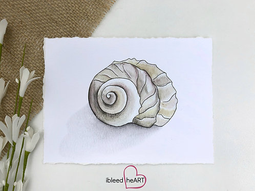 Shell Watercolor Print