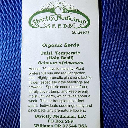 Tulsi, Temperate — Holy Basil (Ocimum africanum) seeds, organic