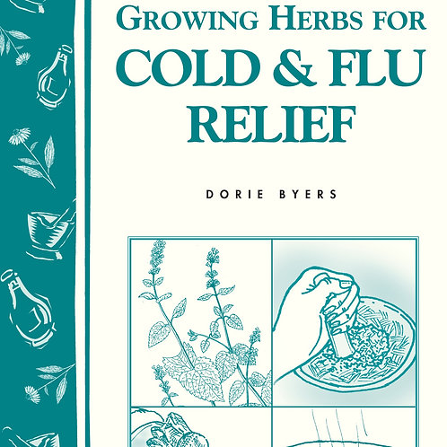Growing Herbs for Cold & Flu Relief - By Dorie Byers