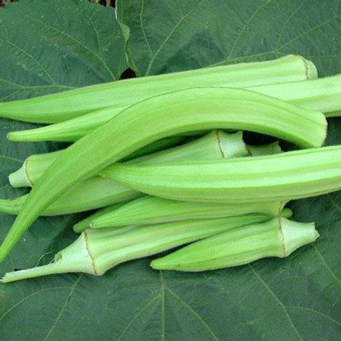 Burmese Okra (Abelmoschus esculentus), 80 Seeds, Organic