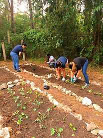 volunteers12_edited.jpg
