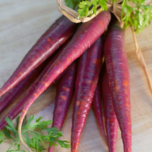 Carrot, Cosmic Purple (Daucus carota) 200 seeds, Organic